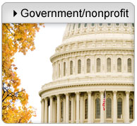 Government and non-profit purchases